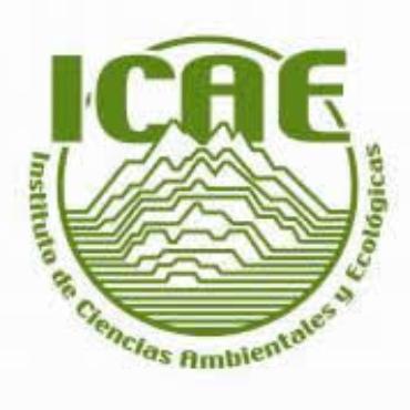 Instituto de ciencias ambientales y ecológicas – ICAE, Universidad de los Andes
