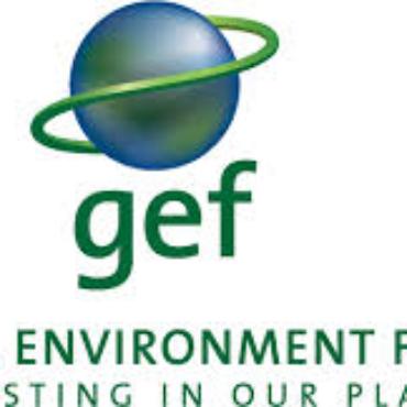 Global Environment Facility (GEF)